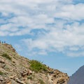 The trail is cut along a steep traverse.- Swiftcurrent Pass Trail