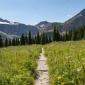 The gradient is gradual during the first 4 miles of trail.- Swiftcurrent Pass Trail