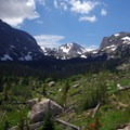 Forest recovering from the Ouzel fire.- Bluebird Lake