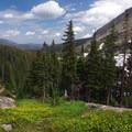 Field of wildflowers.- Bluebird Lake