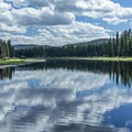 Clearwater River runs alongside the campground.- River Point Campground