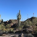 Typical desert landscape.- Mormon Trail to Hidden Valley