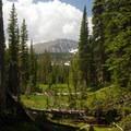 A view through the trees to the mountains that frame Thunder Lake.- Thunder Lake