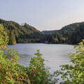 Golden hour over Loon Lake.- Loon Lake