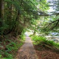 The paved path returns to the Loon Lake Recreation Site beach.- Loon Lake Falls