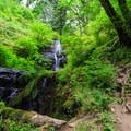 Loon Lake Falls at low summer flow.- Loon Lake Falls