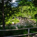 View from the trail.- Natural Stone Bridge and Caves Park