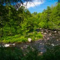 Upper section of Trout Brook.- Natural Stone Bridge and Caves Park