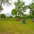 Picnic area.- Veteran's Memorial Park