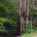 The unmarked trail is across from the Clay Meadow Trailhead.- Northwest Bay Brook Falls