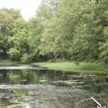 Williams Pond in George Washington Carver National Monument.- George Washington Carver National Monument