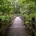 Another of the many footbridges in George Washington Carver National Monument.- George Washington Carver National Monument