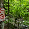 Swimming is not allowed in the brook.- Bash Bish Falls State Park