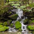 A small waterfall along the brook.- Bash Bish Falls State Park