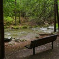 Benches are placed along the brook for guests to rest or take a moment to enjoy the scenery.- Bash Bish Falls State Park
