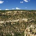 Navajo Canyon.- Petroglyph Point Trail