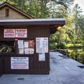 On Byrd Lake, you can rent a canoe, paddle boat or kayak and explore the park by water.- Cumberland Mountain State Park
