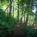 Take the Byrd Lake Trail around the lake to explore farther sections of the park.- Cumberland Mountain State Park