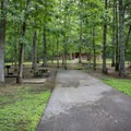 The campsites are spacious and accessible. - Cumberland Mountain State Park Campground