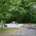 Enjoy a picnic at your campsite, or explore the park and picnic at one of the many available picnic shelters.- Cumberland Mountain State Park Campground