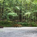 The campsite offers shaded and spacious campsites.- Indian Boundary Campground