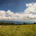 Huckleberry Knob offers a 360-degree view of the Blue Ridge Mountains.- Huckleberry Knob