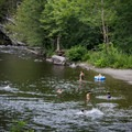 Take an early morning hike and cool off on your way out of the park.- Townsend Wye