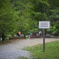 Alcohol is prohibited at the Wye. Always practice Leave No Trace ethics when visiting.- Townsend Wye