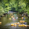 Bring your own tube or rent a tube from one of the many local companies in Townsend.- Townsend Wye