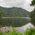 The picturesque Loon Lake as seen from the trail to the falls.- Loon Lake Recreation Site