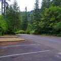 Day use parking area at Loon Lake Recreation Site.- Loon Lake Recreation Site