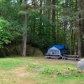 Walk-in tent site number 5.- Loon Lake Recreation Site Campground
