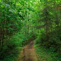 Path to the playground.- Loon Lake Recreation Site Campground