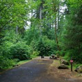 Typical site at Loon Lake Recreation Site Campground.- Loon Lake Recreation Site Campground