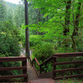 Access stairs from site number 53 to the day use beach.- Loon Lake Recreation Site Campground