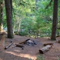 Creekside campsites at approximately 1.5 miles in.- Elk Lake Creek: North Trailhead to Battle Creek