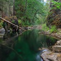 A long exposure of the glassy, green, clear waters.- Elk Lake Creek: North Trailhead to Battle Creek