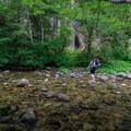 The second of three major creek crossings over Elk Lake Creek.- Elk Lake Creek: North Trailhead to Battle Creek