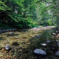 Downstream of the second creek crossing.- Elk Lake Creek: North Trailhead to Battle Creek
