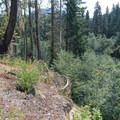 A recent landslide diverts the trail up a steep and exposed slope.- Elk Lake Creek: North Trailhead to Battle Creek