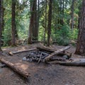 A well-developed campsite at the end of this section of trail.- Elk Lake Creek: North Trailhead to Battle Creek