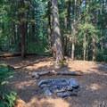 These campsites lie between Battle Creek and Elk Lake Creek.- Elk Lake Creek: North Trailhead to Battle Creek
