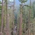 Elk Lake Creek is far below at the beginning of the trail.- Elk Lake Creek: North Trailhead to Battle Creek