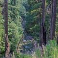 Elk Creek far below.- Elk Lake Creek: North Trailhead to Battle Creek