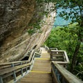 The stairs make this hike much more accessible.- Chimney Rock State Park