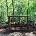 Complimentary firewood.- Torreya Trail