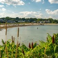 Looking at Willard Beach from Fisherman's Point.- Willard Beach