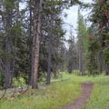 Start of Specimen Creek Trail.- Sky Rim Trail: Specimen Creek to Black Butte