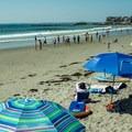 Sun umbrellas line the base of the wood-clad sea wall.- Gooch's Beach