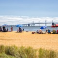 Crowds relax on a hot summer day.- Sandy Point State Park